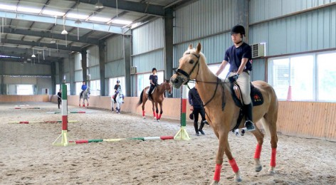 2016/17 Horse Riding Report